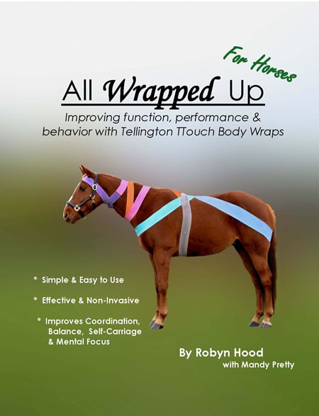 All Wrapped Up: Improving function, performance & behavior with TTouch® Body Wraps (Horse)