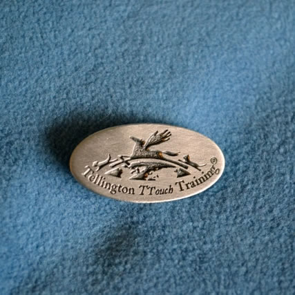 TTouch Pin - Pewter