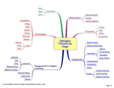 Dogs 04 Mind Map