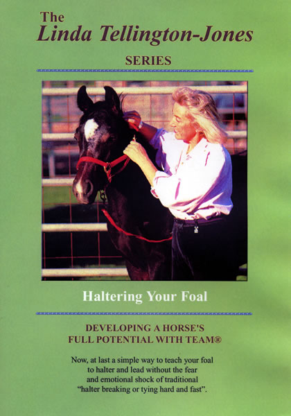Haltering Your Foal Without Trauma DVD