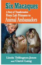 Animal Ambassadors: Lab Primates Teach Children - Kindle Edition
