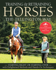 Training & Retraining Horses the Tellington Way