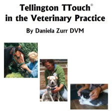 Tellington TTouch® in the Veterinary Practice
